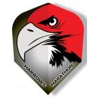 Standard Eagle Marathon Flights - Flight