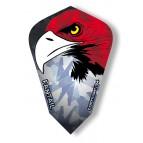 Eagle Fantail Flights - Flight