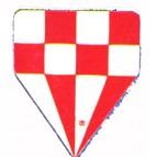 Delta 60 Red Cheque - Flight